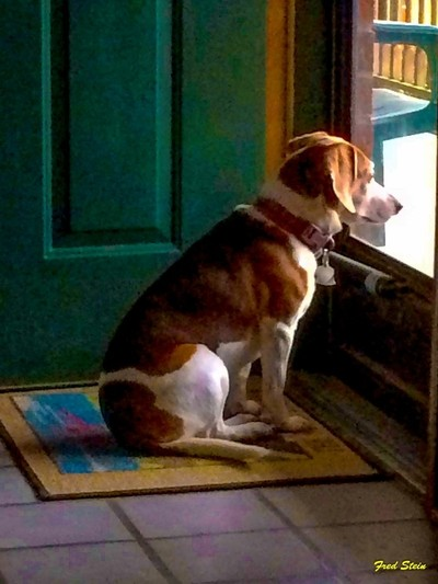 Waiting for Papa