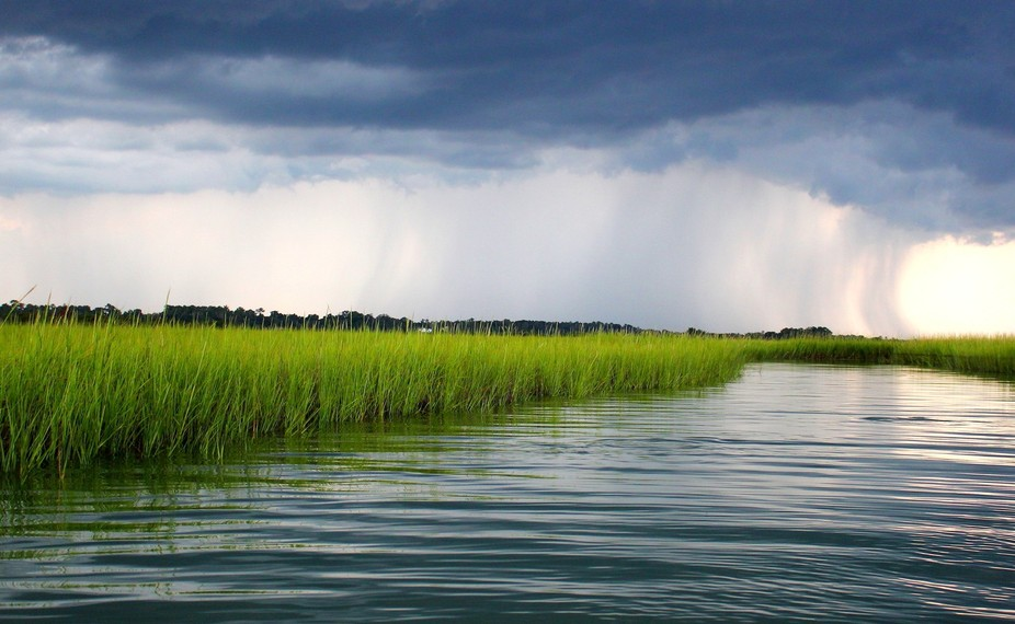 Rain on the Marsh is taken off the North Carolina Coast. I love the contrast of the grays and whi...