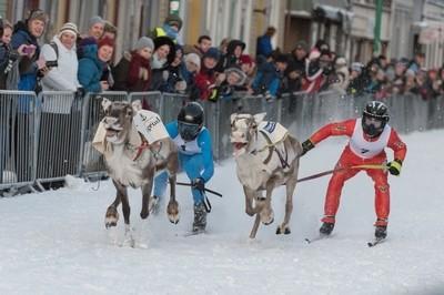 Reindeer Racing Championships