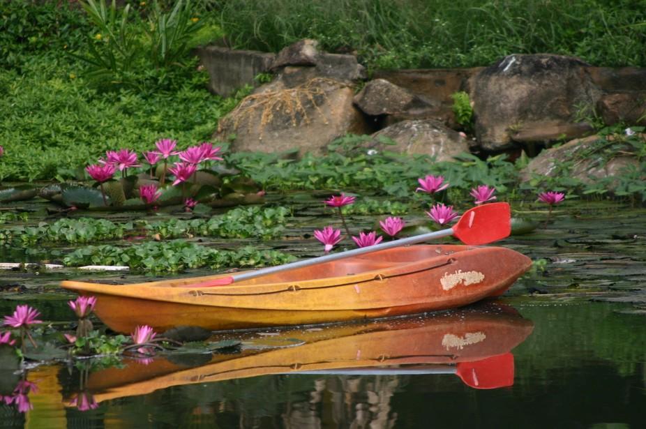 Calm still pond.