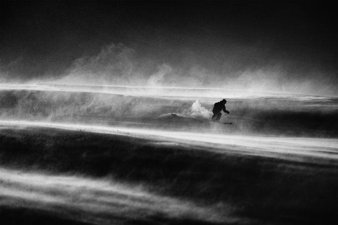 Flight by petersvoboda - Wind In Nature Photo Contest