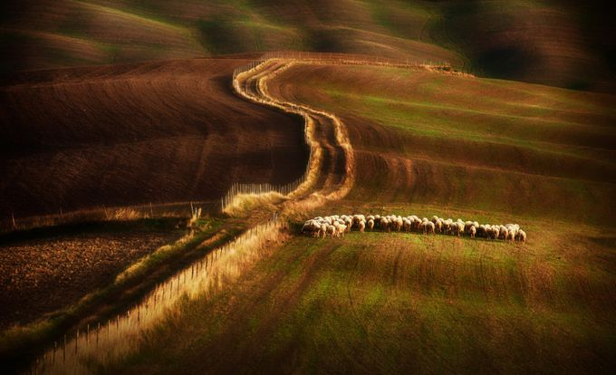 Crossing-the-fields by petersvoboda - Composing with Curves Photo Contest