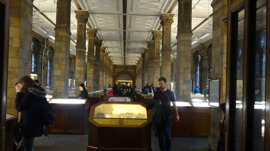 Natural History Museum 4