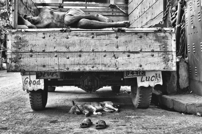 Good Luck by sandipbose - Subjects On The Ground Photo Contest