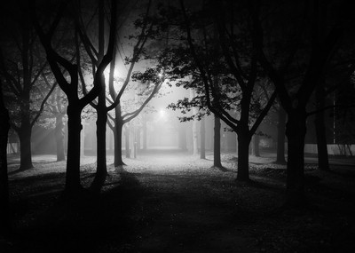 foggy alley