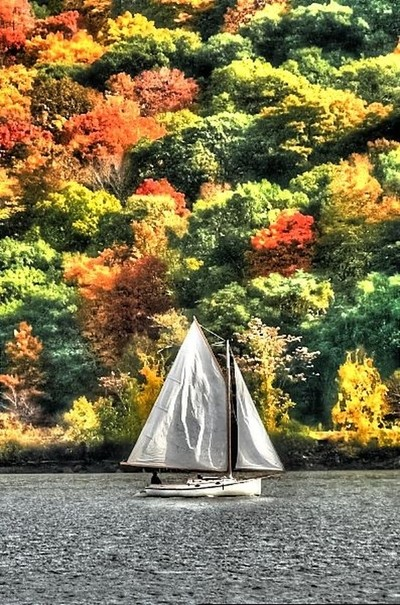 sailing in the fall