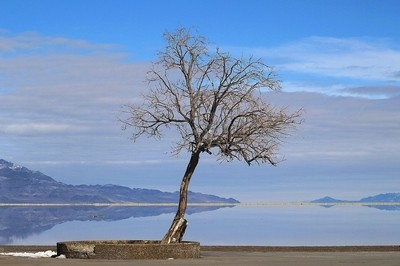 Reflection of the Great Salt Lake #3
