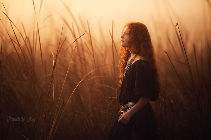 Golden Light by suzymead - Red Hair Photo Contest