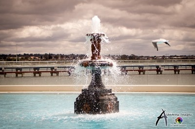 fountain fly by