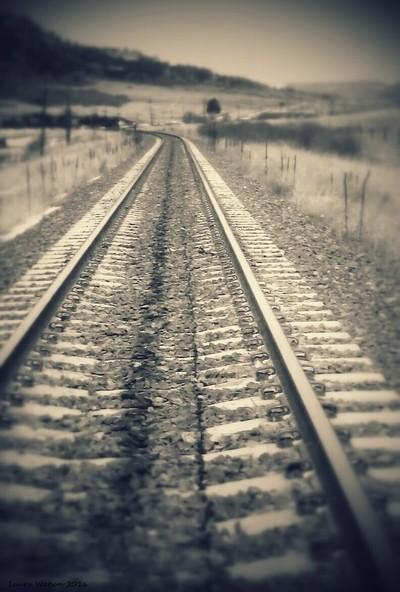 WALKIN THE LINE