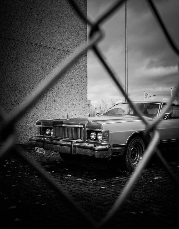 VW vengeance