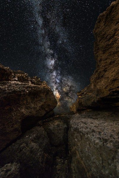 The stars of the canyon