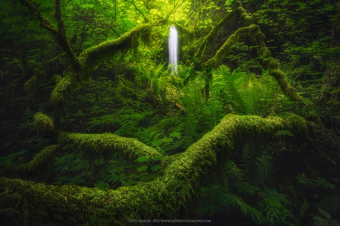 Serenity by pjcimages - Celebrating Earth Day Photo Contest 2019