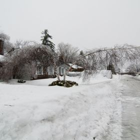 February 24 huge snow and ice storm putting over 200 K homes without electricity for 2-3 days