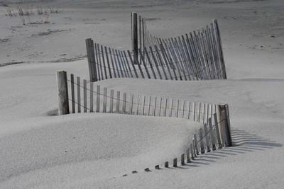 Sand Fences