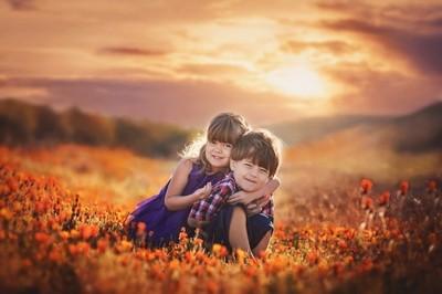 Sunrise Poppies