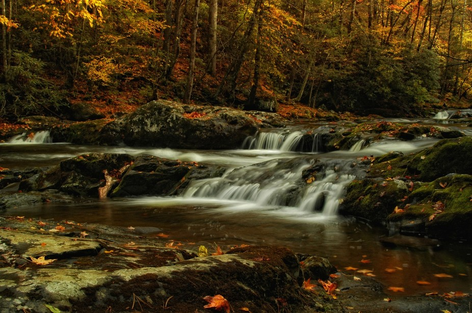 Taken at in the Tremont section of Great Smoky Mountains National Park