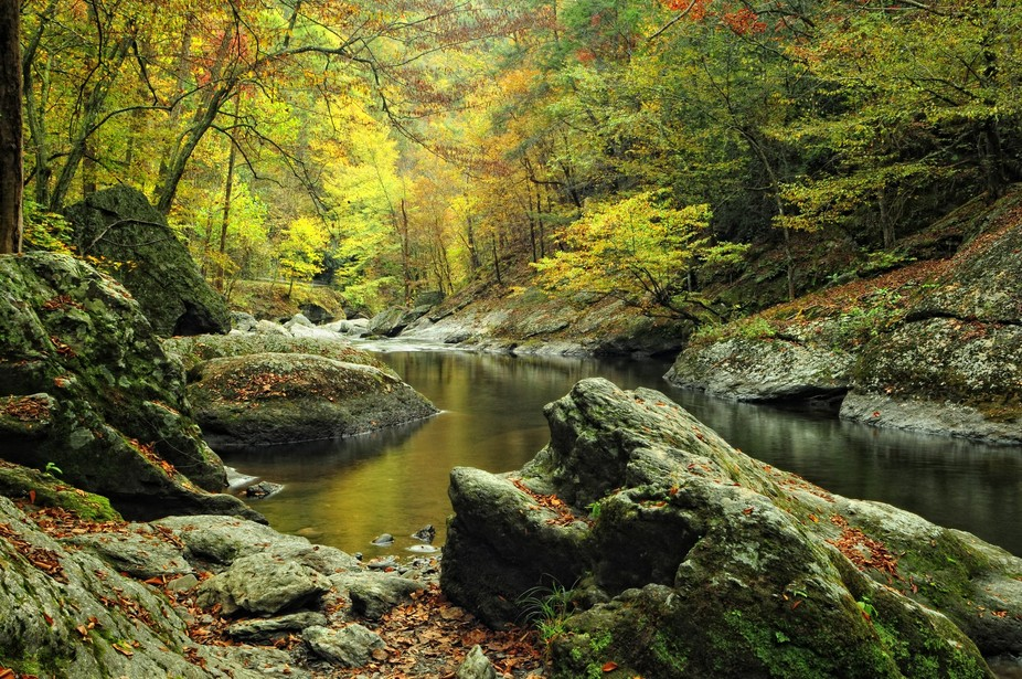 Great Smoky Mountains National Park is like my Disney World.  I would love to just get lost there...