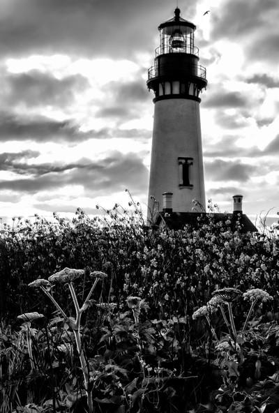 Yaquina Head Lighthouse.