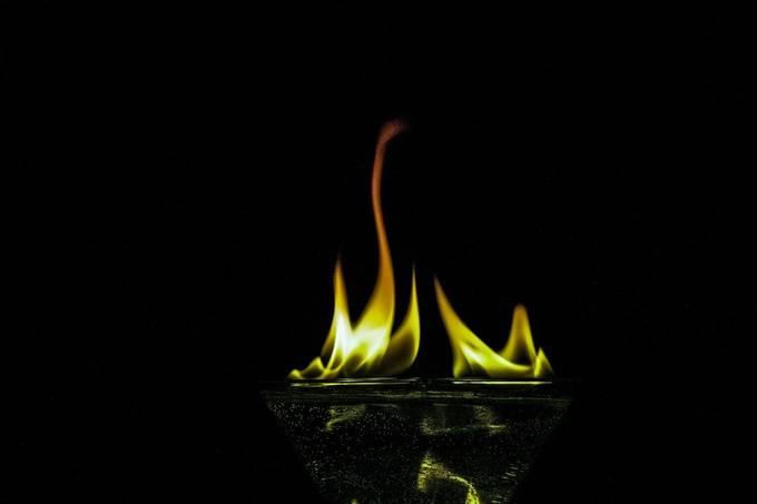 Flame Swan