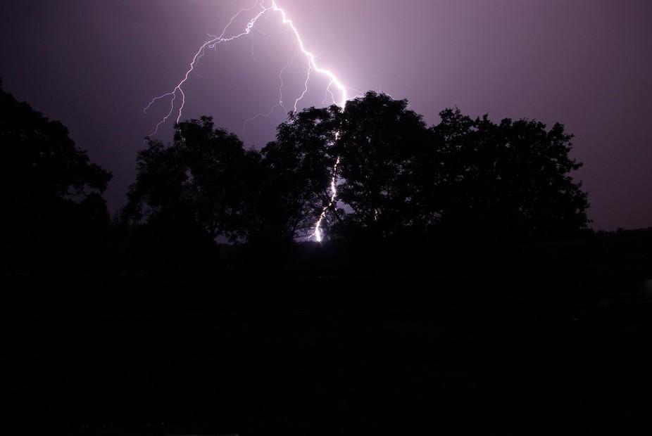 Lightning striking behind trees where I live