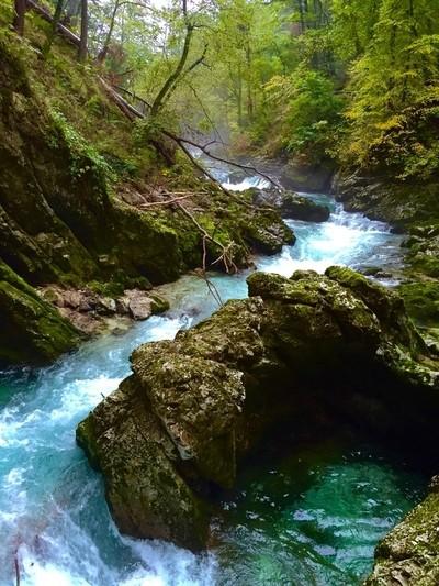 Winding Canyon River