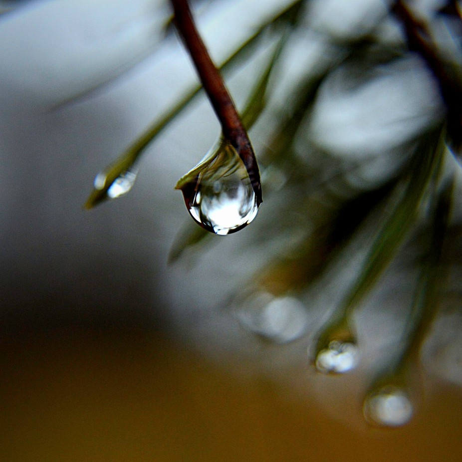 Orange, Green, and Blue background to a wonderful raindrop