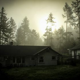 Catching the sun behind the fog and trees at this beautiful home in Oregon.