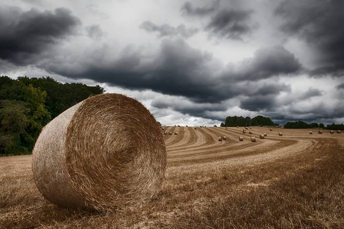 straw bales by ulrich_hoefer - Monthly Pro Vol 21 Photo Contest