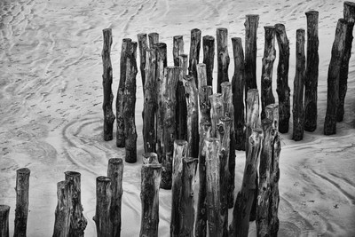 Pilings Brittany