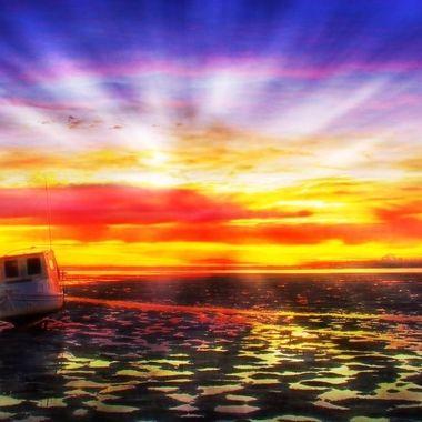 Tin Can Bay - Il Paradiso
