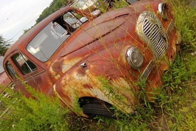 Rusty beauty