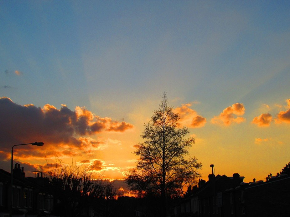 Picture taken in Charlton, south east London (England) on my way home