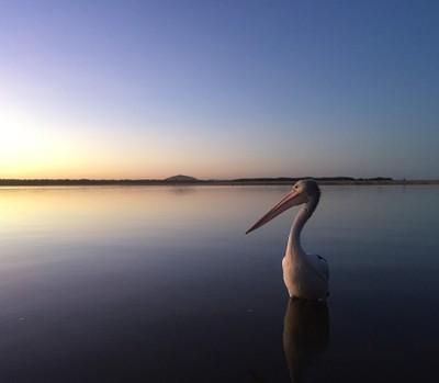 Sunset at Maroochydore, Queensland.