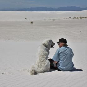...but my dog Misiu absolutely loved White Sands, New Mexico.