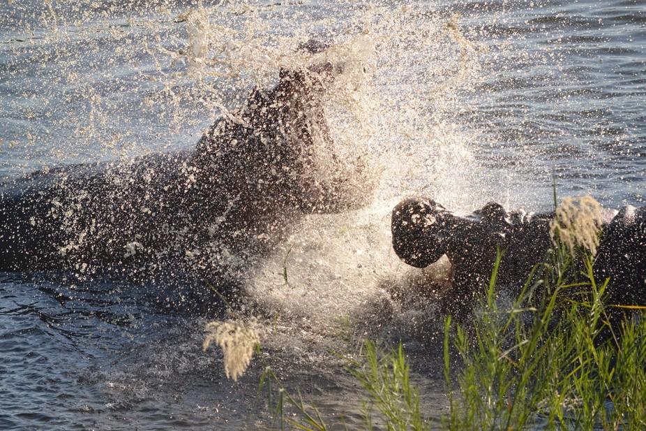 KNP Nqwenya lodge, Crocodile River