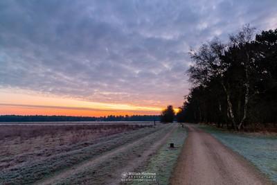 Frosty Twilight