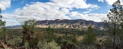 Aroona Valley Flinders Ranges South Australia