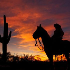 I had my friend bring her horse out and pose for me during a beautiful sunset in Tucson, Arizona.