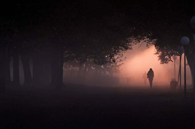 Take care of you by Thore_Rehbach - A Walk In The Mist Photo Contest