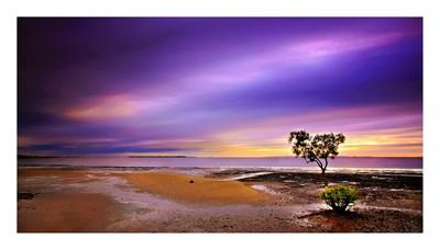 Wello Point at Dawn
