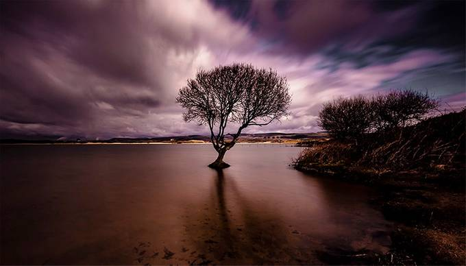 kenfig  by jackiegoodwin - Tree Silhouettes Photo Contest