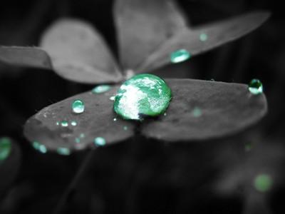 Colour Pop Droplets