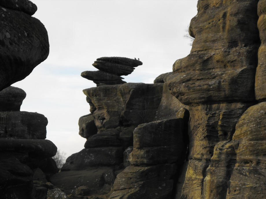 Jan 5th Brimham Rocks 082