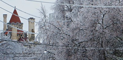 Casa Loma surrounded by Ice Storm Laden Icicled Trees - Winter 2013 -Photo by David R. Smith