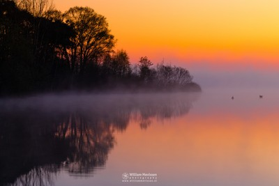 Foggy Sunrise 'Reflections'