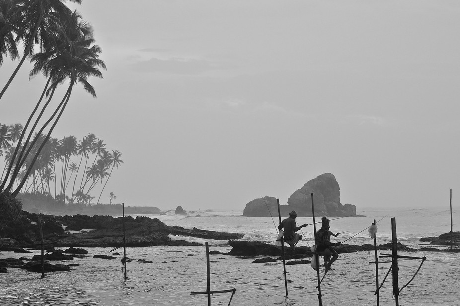 Perched on their poles stuck in the sand, the stilt fishermen of Southern Sri Lanka concentrate on their lines.