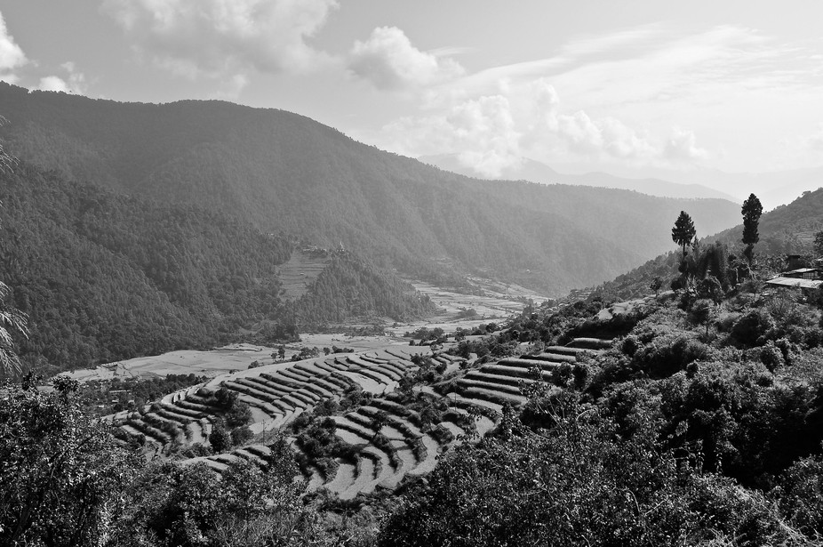 As we walked down into the valley, signs of cultivation appeared and then the villages