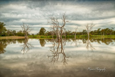 Reflections_4841