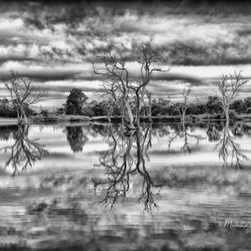 Reflections B&W_4841